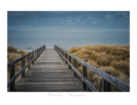 #landscape #sea #trees #beach #nature #mcgregcor #photography #De Haan (24)