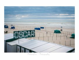 #landscape #sea #trees #beach #nature #mcgregcor #photography #De Haan (36)